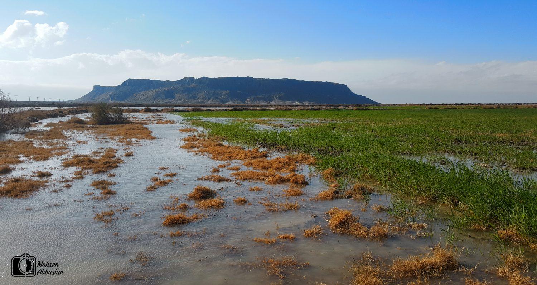 طبیعت زیبای کوه اوشیدا