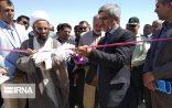 افتتاح مزرعه پرورش شترمرغ در شهرستان مرزی هیرمند