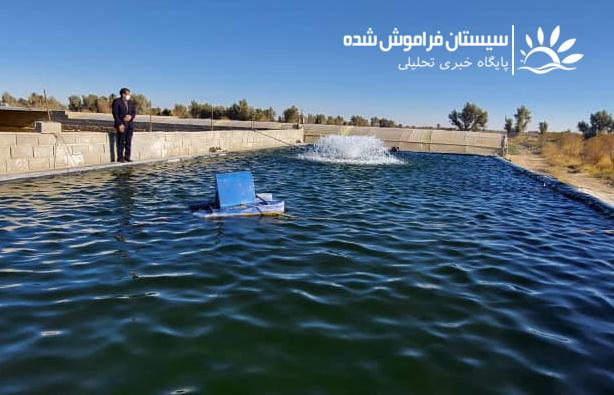 رها سازی ٣٠ میلیون لارو ماهی در منابع آبی سیستان و بلوچستان