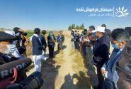 طرح آبیاری نوین به ۶۵ هزار بهرهبردار کشاورز دشت سیستان خدمترسانی میکند